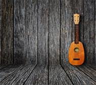 One ukulele leaning on a wood wall