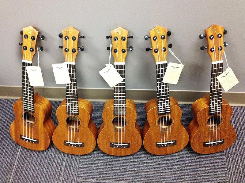 5 UKC ukuleles on display